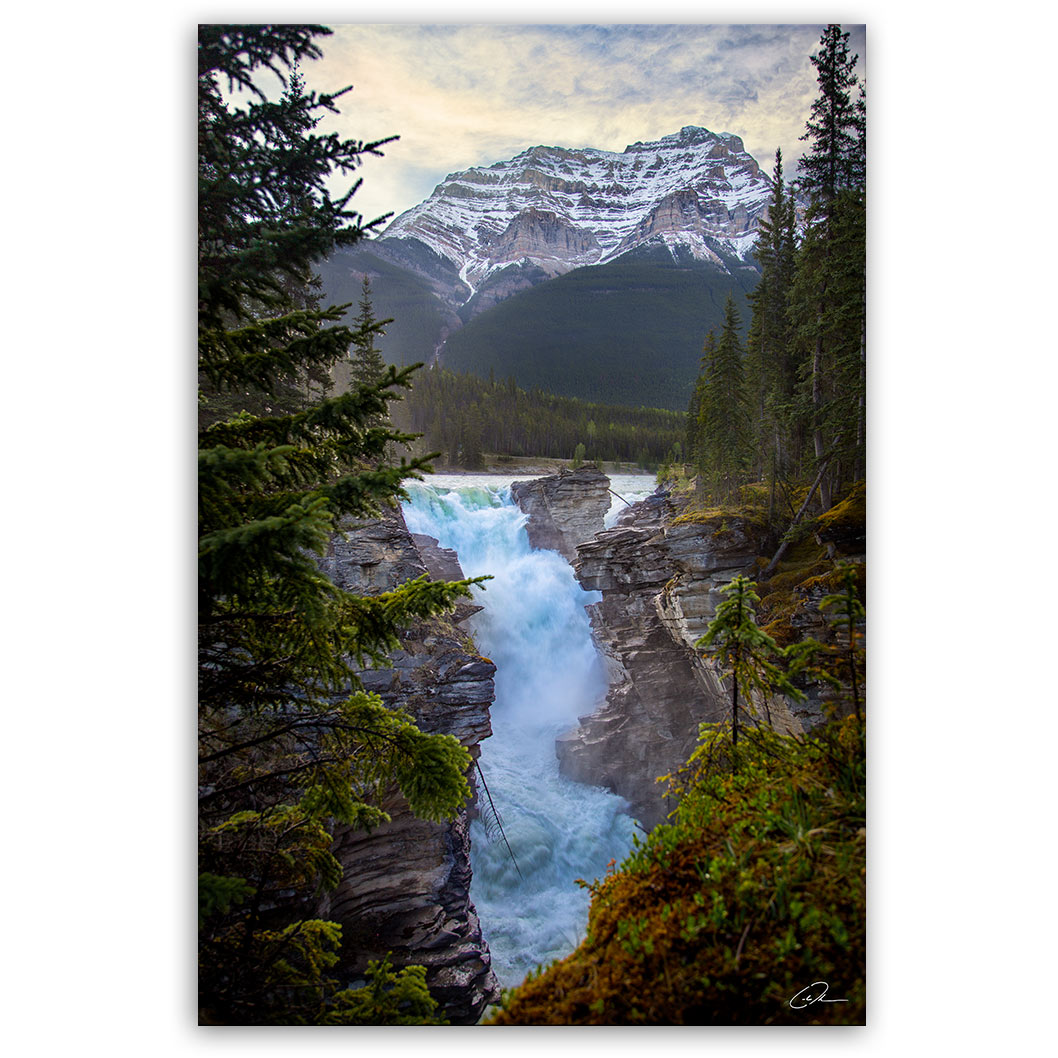 Athabasca Falls - Jasper, AB - Fine Art Photo Print